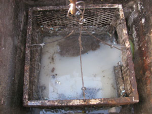 Figure 8. A manually operated basket