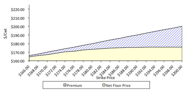 Figure 4. Net futures prices for put option at various strike levels. Nov FC contract. Prices quoted in June.