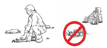 Pickup objects such as stones, bottles, pinecones and sticks, which can be thrown by the mower.