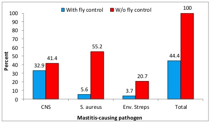 Figure 7. Prevalence of mastitis in Louisiana dairy herds with and without a fly control program.