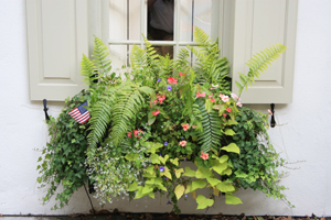 Figure 1. Container gardening allows homeowners