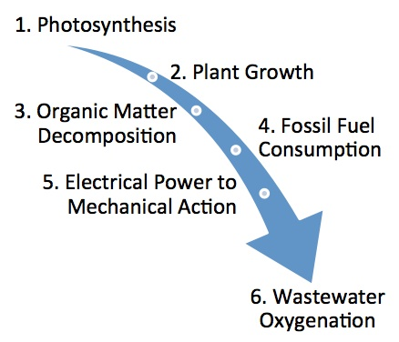 Figure 1. The six steps required to deliver dissolved