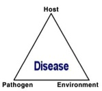 Figure 1. The disease triangle. Three components must be present: a susceptible host, a virulent pathogen, and an environment favorable for disease development.