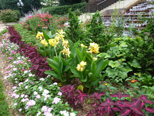 Figure 11. Perennials (Euphorbia, Canna, Buddleia) are used
