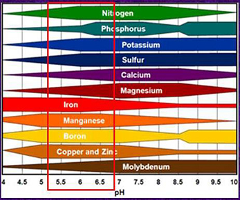 Figure 5. Nutrient availability chart. The red box shows the pH range in which mineral nutrient uptake is optimal.