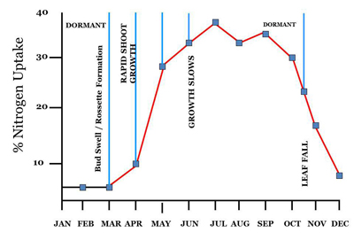 Figure 7. Nitrogen uptake throughout the year shows that fertilizer should be applied in spring during shoot growth.