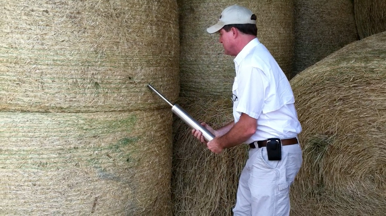 Figure 3. Sampling a lot of hay bales using a Colorado