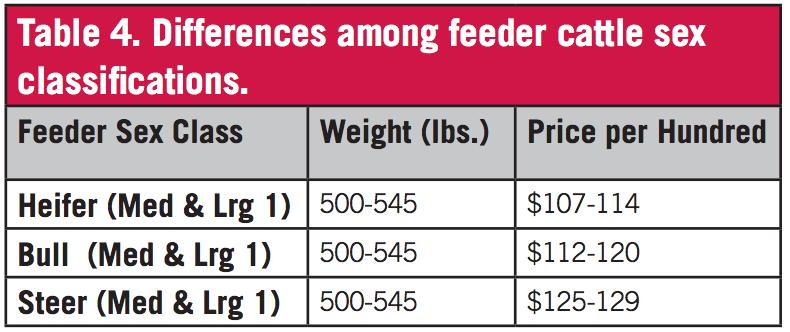 Feeder Calf Grading Fundamentals   UGA Cooperative Extension