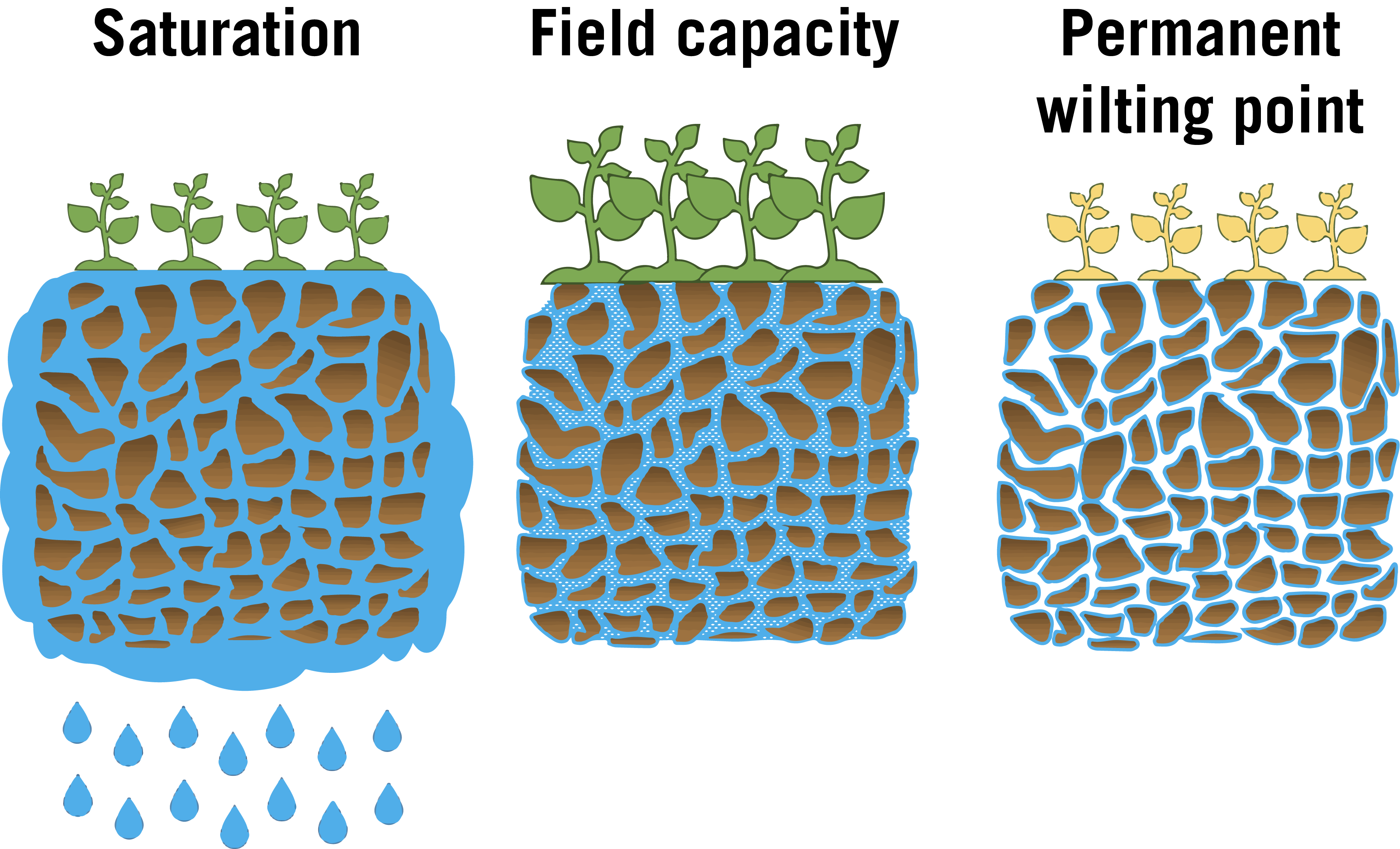 Illustration of soil saturation