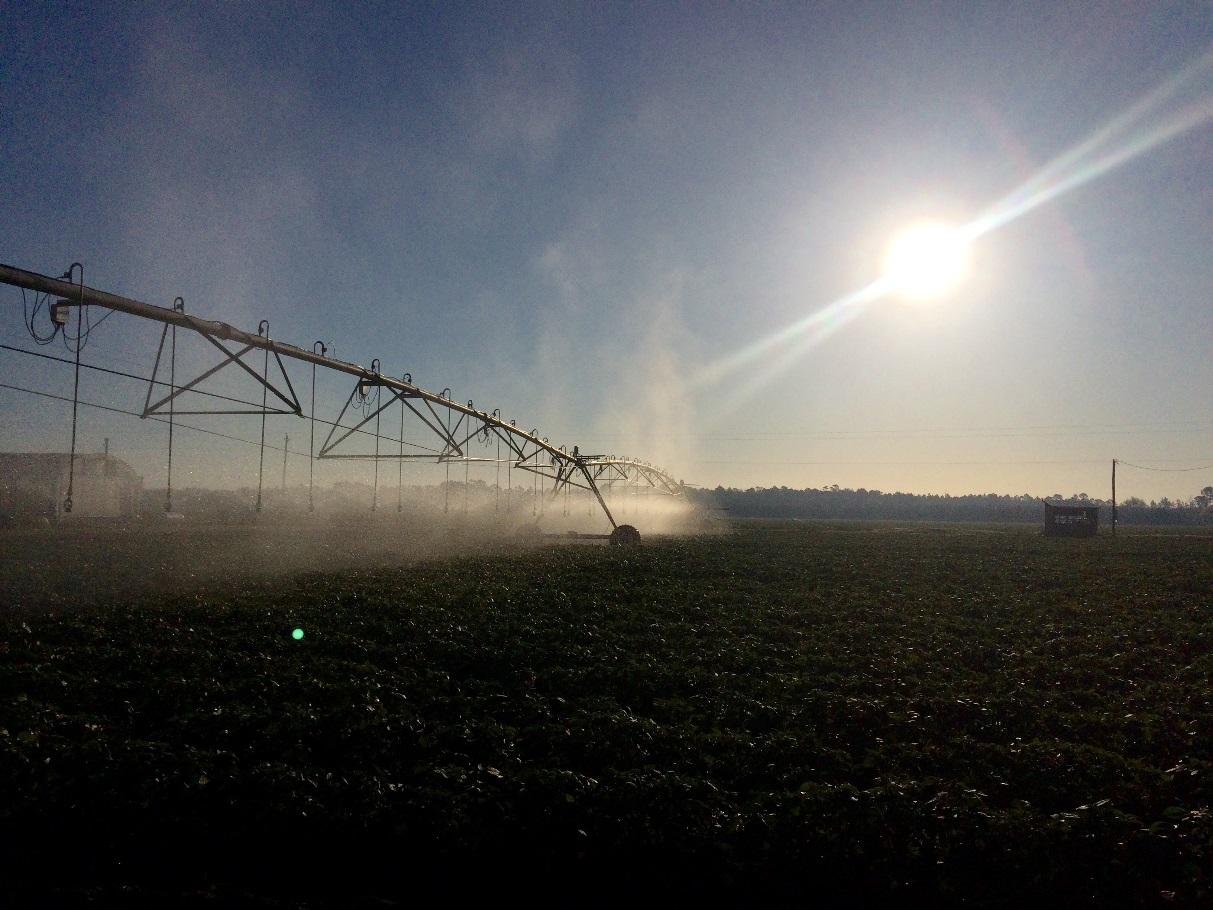 Overhead sprinkler irrigation system