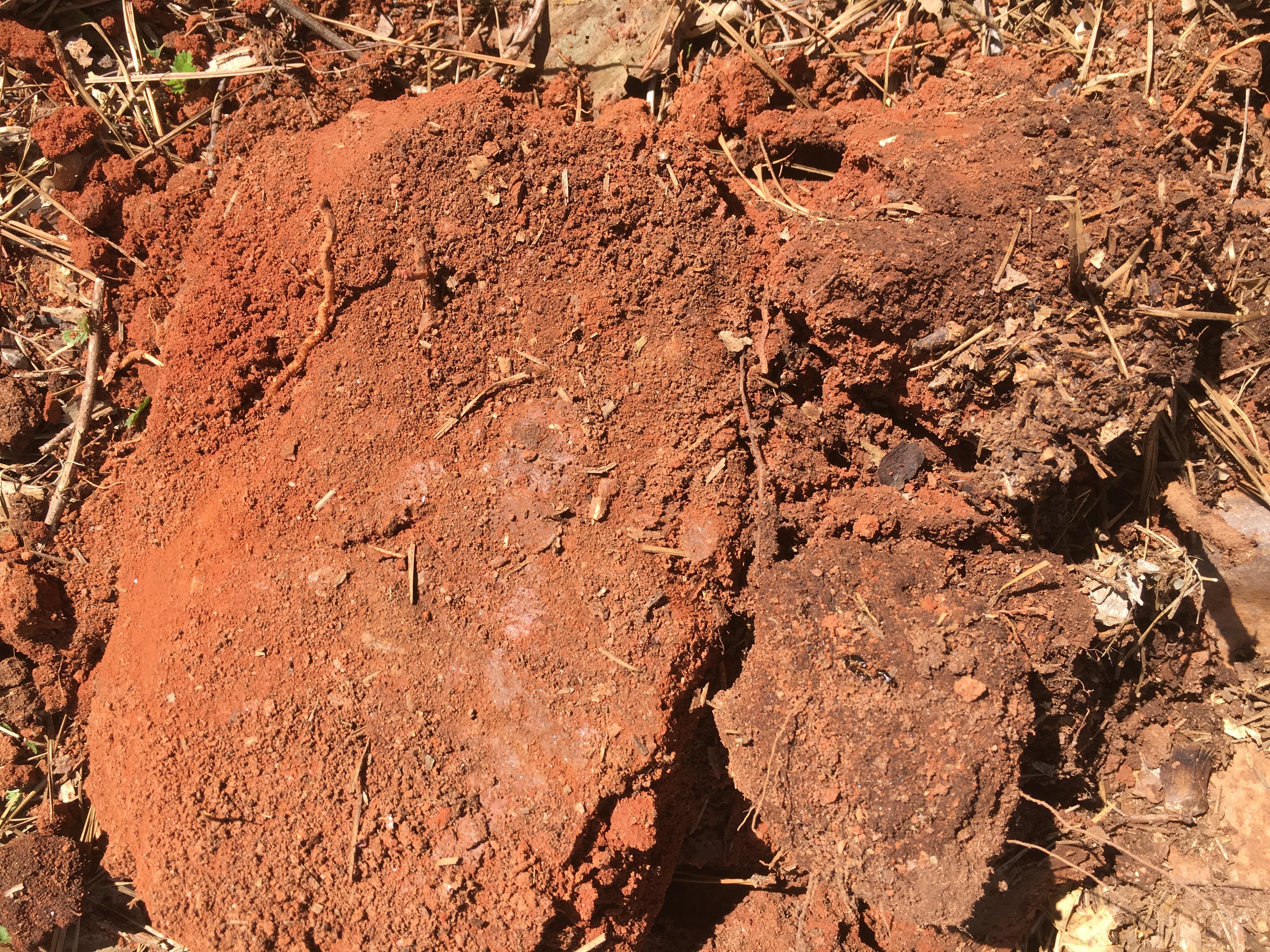 Upland soil