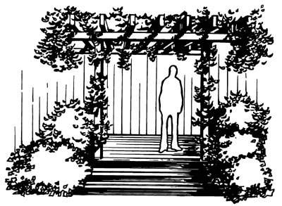 drawing of a person standing under a pergola wrapped in vines