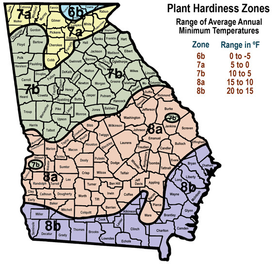 cold hardiness zones map of Georgia with range of annual minimum temperatures. Zone 6b = 0 to -5 F; zone 7a = 5 to 0 F; zone 7b = 10 to 5 F; zone 8a = 15 to 10 F; and zone 8b = 2 to 15 F.