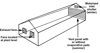 Figure 4. Fans in end wall.