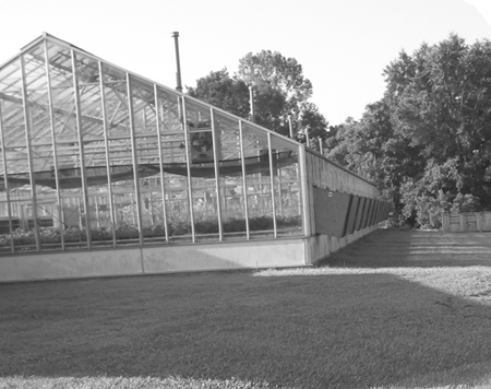 Greenhouses: Heating, Cooling and Ventilation | UGA