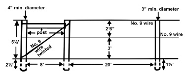 Dimensions of a two-wire vertical trellis (four-arm Kniffin), showing end braces.