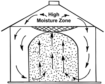 Figure 5. Convection air currents caused by differences in temperature produce moisture condensation in top layers of grain.