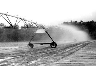 Photo of a center pivot irrigation system with low pressure spray nozzles.