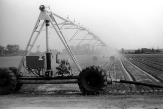 Photo of hose-fed linear move irrigation system.