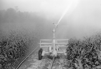 Photo of cable-tow traveler irrigation system.