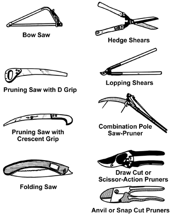 Examples include bow saw, hedge shears, lopping shears, anvil/snap cut pruners, and draw cut/scissor-action pruners