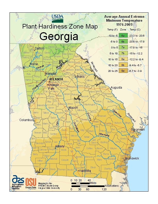 Georgia plant hardiness zone map