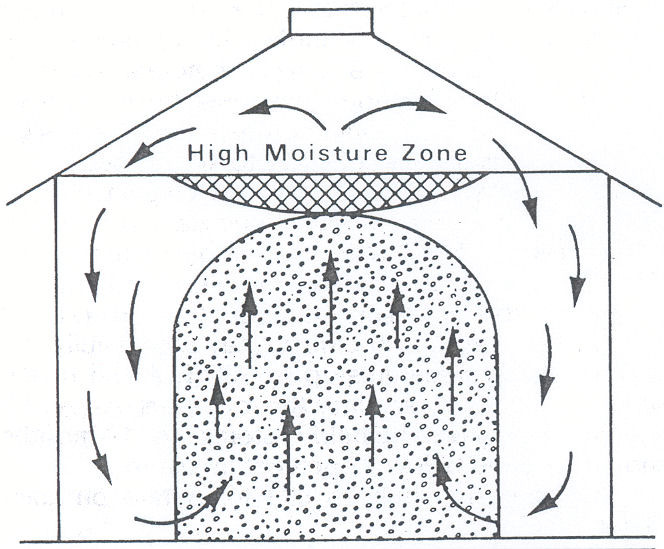 Figure 2. Convection air currents caused by differences in temperature produce moisture condensation in the top layers of grain.
