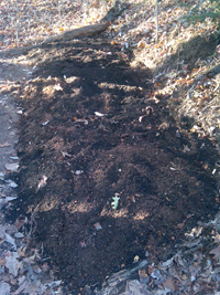 Plot prepared for