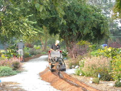 irrigation contractor digging trench