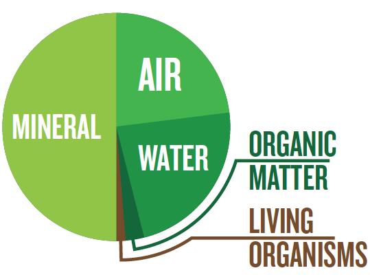 pie chart: 50% minerals, 23.5% air, 23.5% water, 2.5% organic matter, 0.5% living organisms