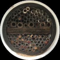 Mason bee paper tubes