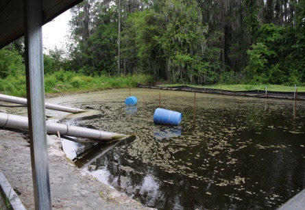 inlet pipes running from irrigation ponds