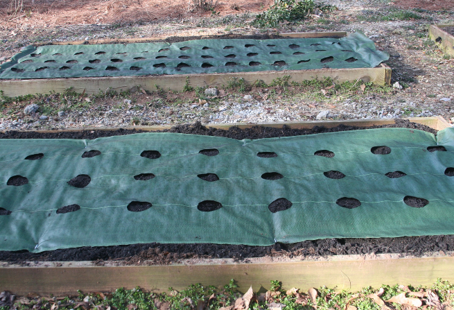 Garden mats with predrilled holes