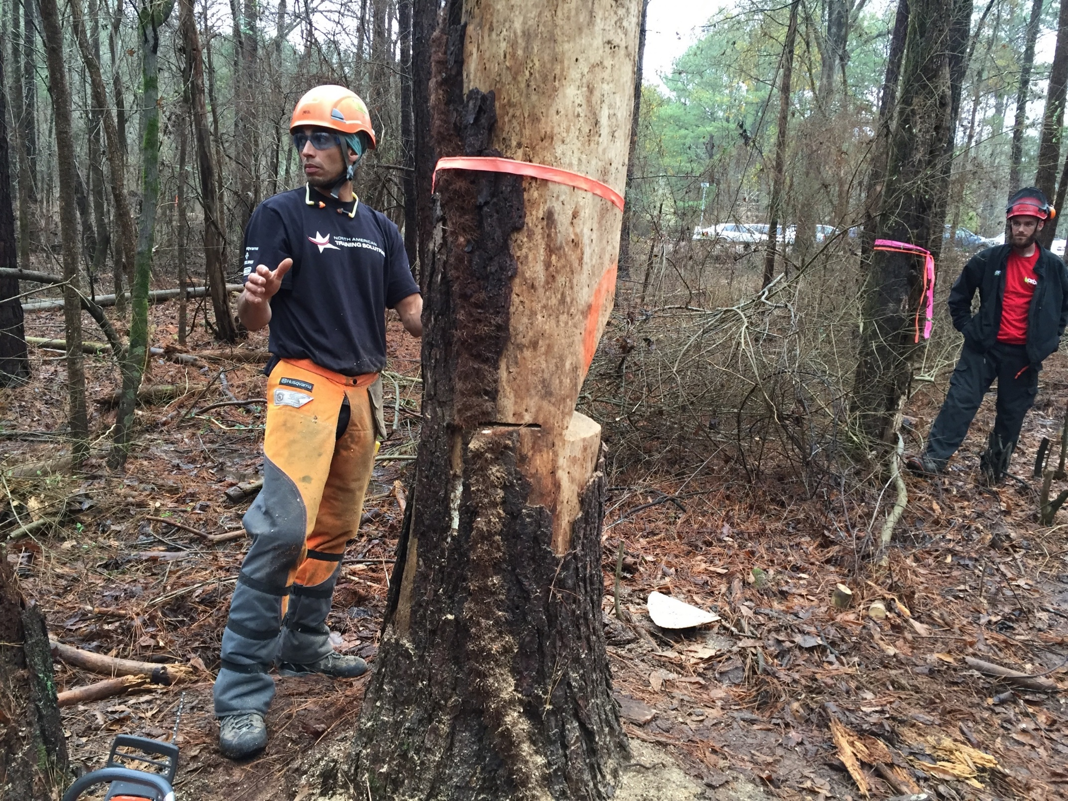 Man in protective gear for a chainsaw