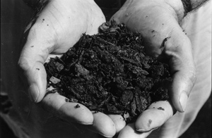 Figure 3. Ground pine bark is an ideal organic amendment for preparing container soil mixtures.