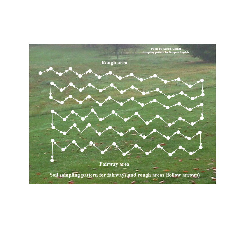 Figure 2. Soil sampling pattern for field crops or golf course