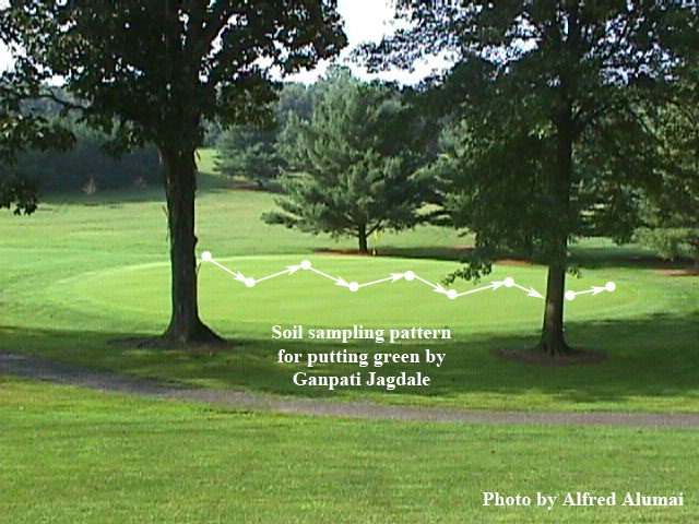 Figure 3. Soil sampling pattern for small area