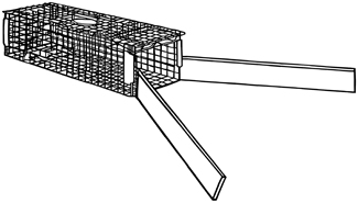 "Figure 1. Diagram of the unbaited trap with wings used to capture nine-banded armadillos in south Georgia, summer, 2004. Wings were constructed of pressure-treated lumber (2"" x 6"" x 6')."