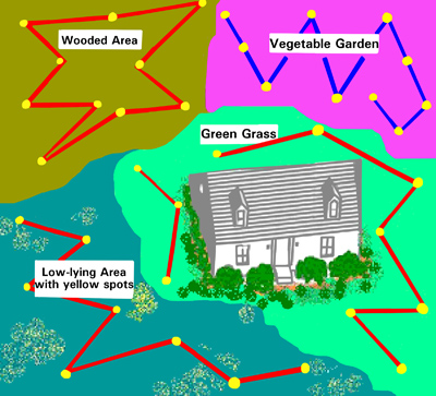 Illustration of four types of areas around a house with zig zag patterns and sampling points for each area. Example areas are: wooded, green grass, vegetable garden, and low-lying area with yellow spots.