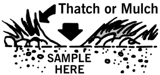 illustration showing where to sample. An arrow points at a bare spot, surrounded by thatch or mulch.