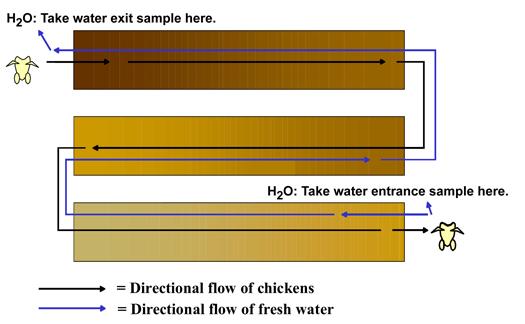 Figure 1. Counter-Current Scalder Sampling Points.