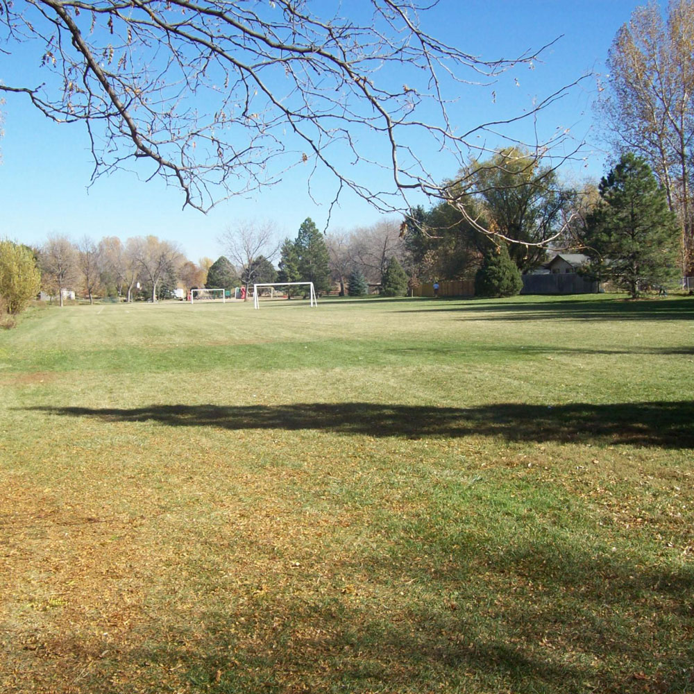 Annual Bluegrass Control in Residential Turfgrass cover image
