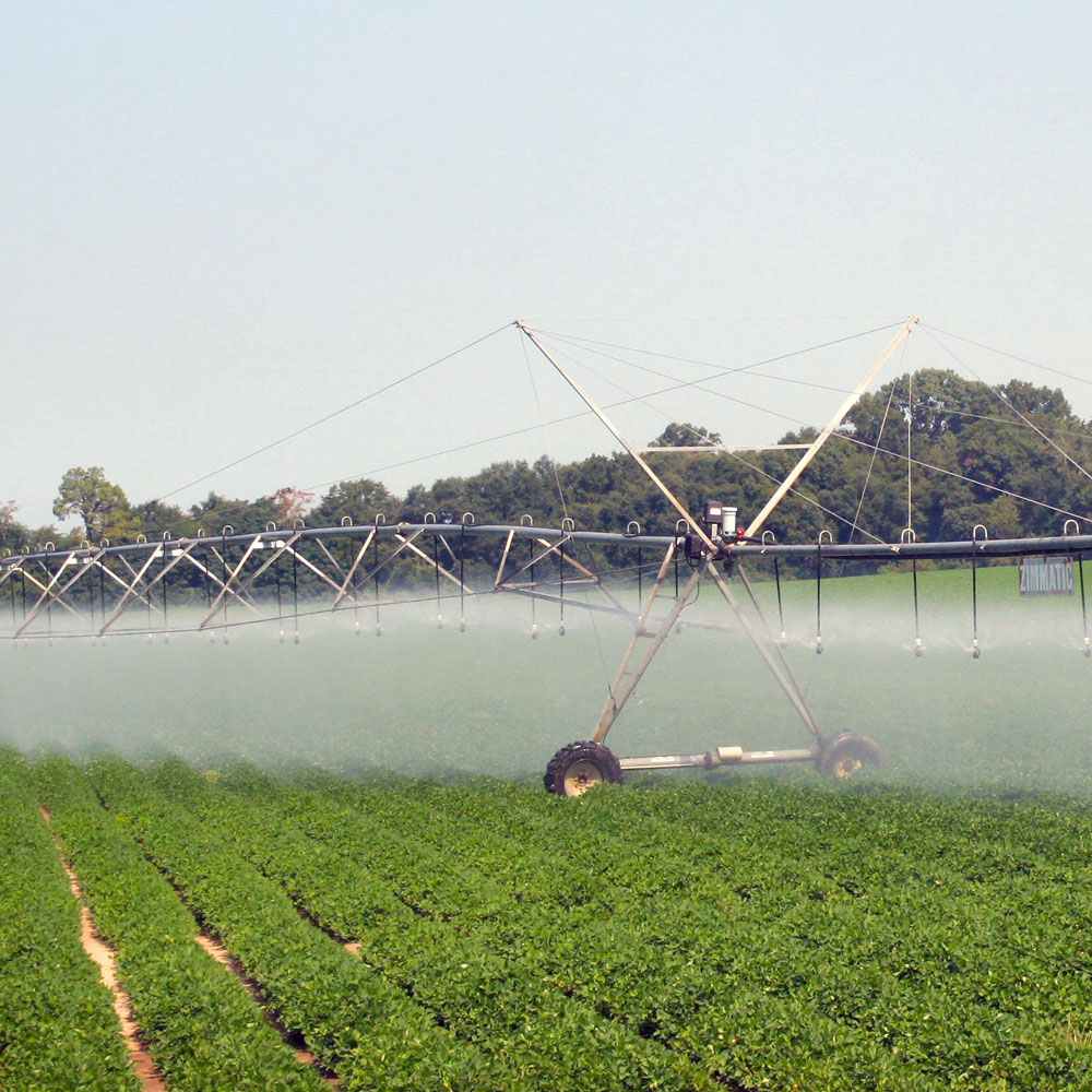 Factors to Consider in Selecting a Farm Irrigation System cover image