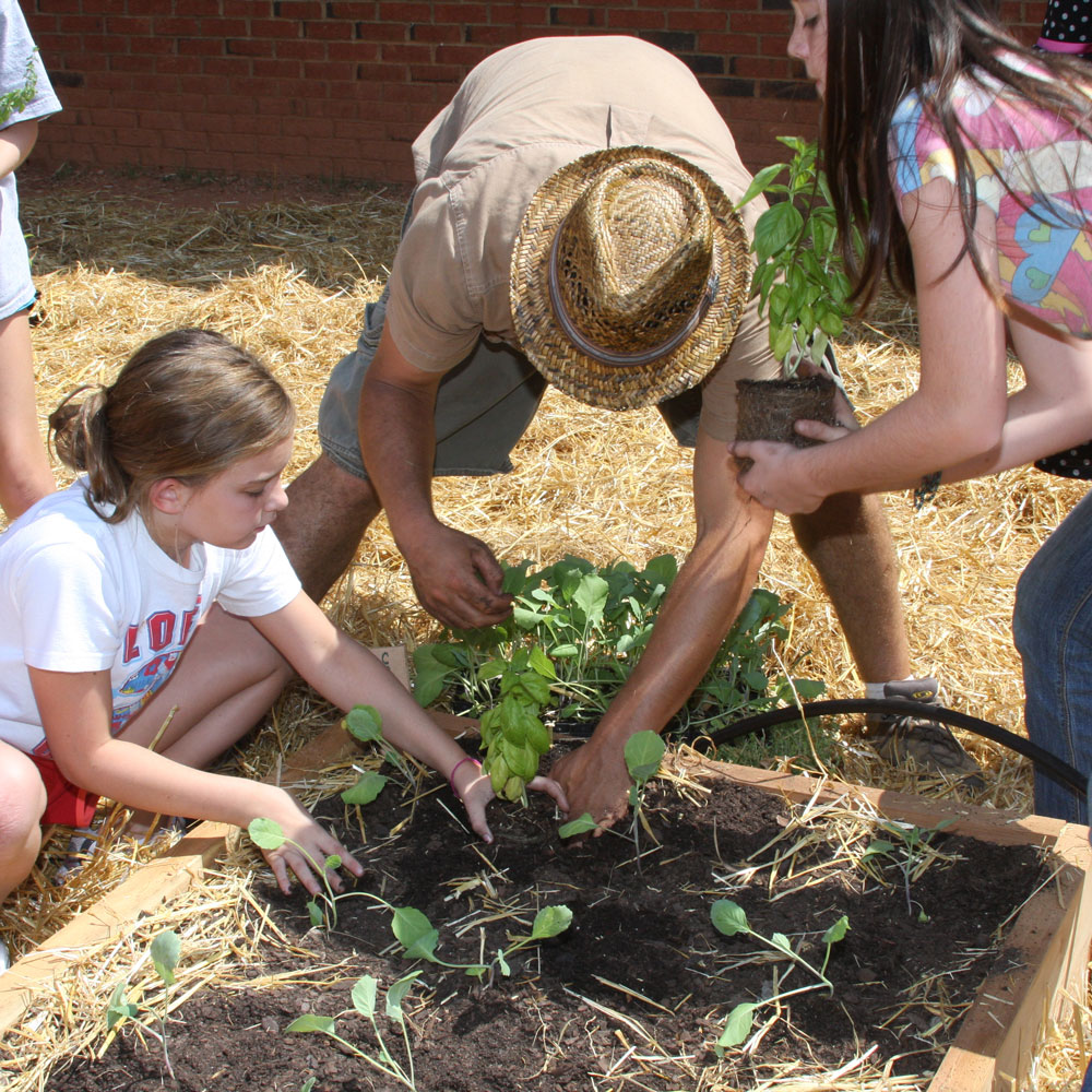 Fruits & Vegetables | UGA Cooperative Extension