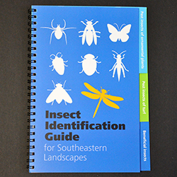 Insect Identification Guide for Southeastern Landscapes cover image