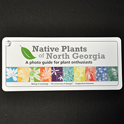 Native Plants of North Georgia: A Photo Guide for Plant Enthusiasts cover image