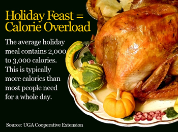 Holiday Turkey