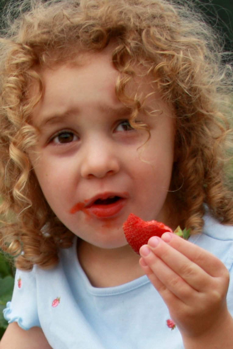 Annika Sorrow eats a strawberry while sitting on a raised bed at Washington Farms, Watkinsville. May 2008