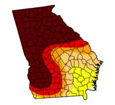 During Georgia's historic 2007-2009 drought, north Georgia farmers, utility managers and homeowners all felt the impact of the drought. The state's current drought is impacting middle Georgians most severely.