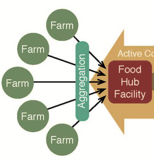 Food hubs aggregate produce from small farmers to meet larger produce orders, like those placed by schools, retailers and restaurants.